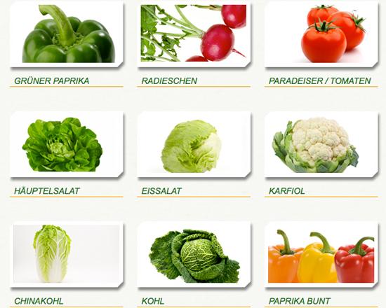 Atemberaubend PERLINGER GEMÜSE - frisches Gemüse aus dem Seewinkel/Burgenland in #KD_43